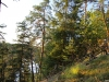 Přírodní rezervace Krkavčina